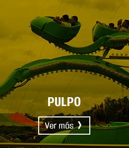 pulpo-hover