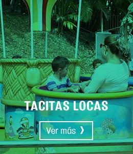 tacitas-locas-hover