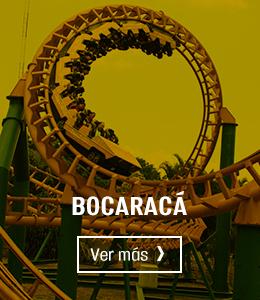 Banner Bocaracá