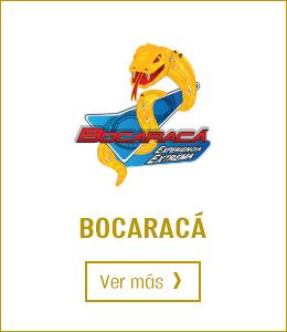 Banner Bocaracá Parque Diversiones
