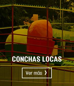 Banner Conchas Locas