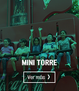 Mini Torre Parque Diversiones