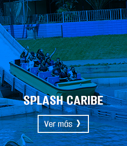 splash-hover